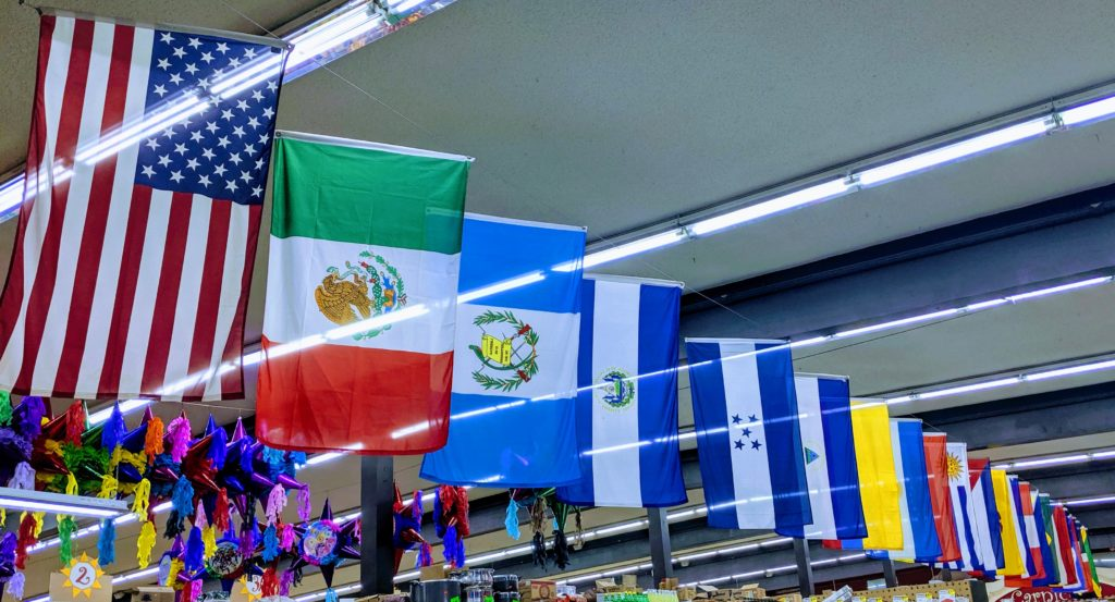 Flags of all the countries in Latin America, including the United State's flag.