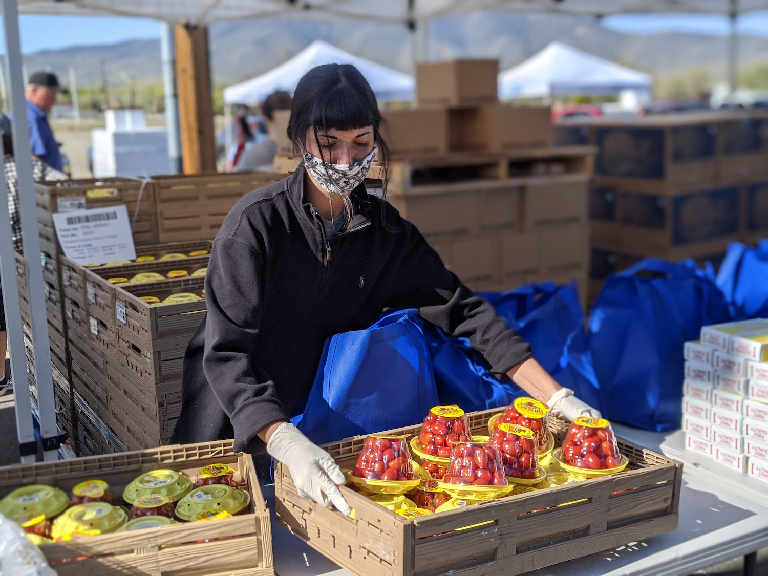 A woman unpacks a crate of cherry tomatoes for a distribution of fresh produce.