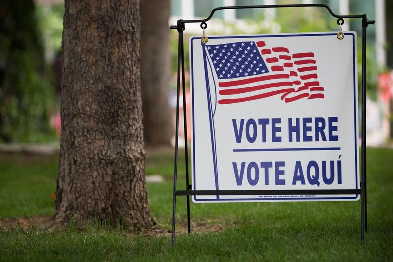 """A sign with an American flag that says, """"Vote here/Vote aquí,"""" stuck into the grass next to a tree. The background is out of focus."""