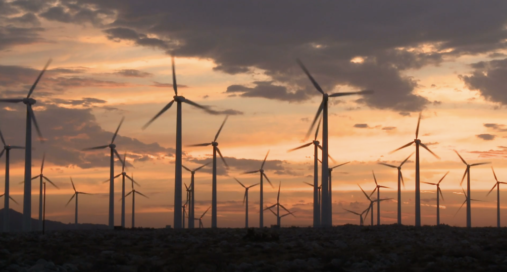 Image with dozens of wind turbines perhaps at night fall.