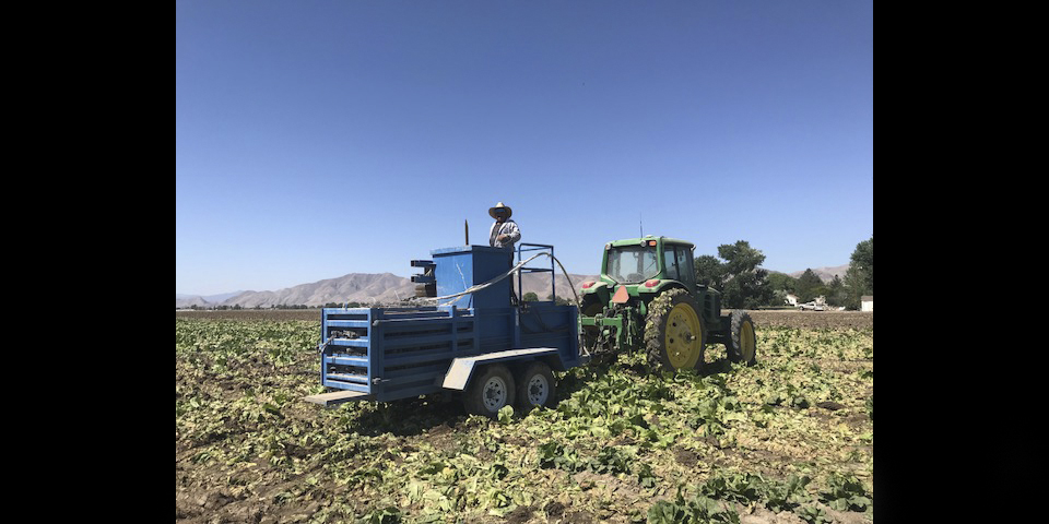 man in truck on farmland